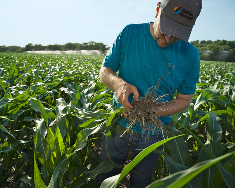 learn more about agronomy