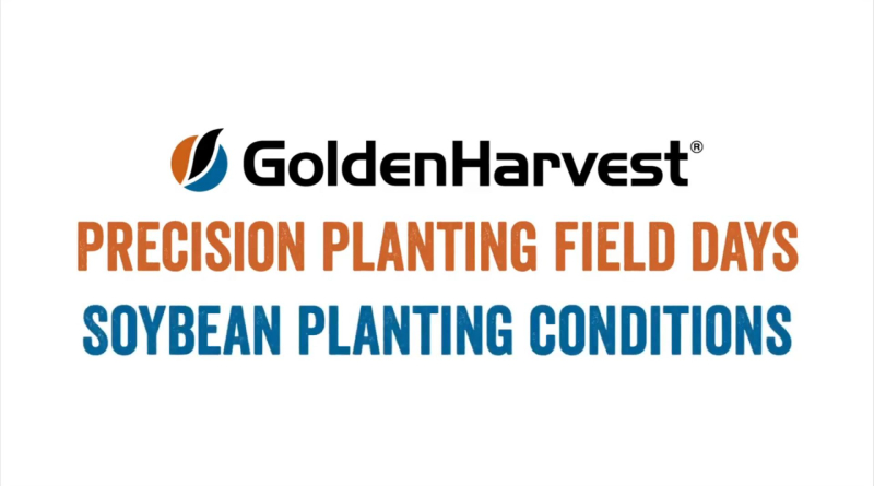 Golden Harvest and Precision Planting Field Days: Soybean Planting Conditions